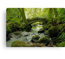 Kilfane Glen  Canvas Print