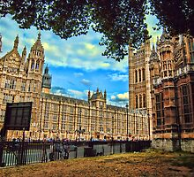 Houses of Parliament by David Bradbury