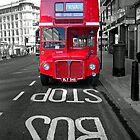 Big Red Bus by David Bradbury