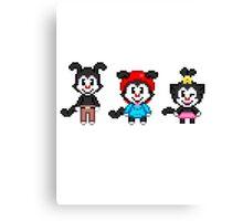 Animaniacs - Yakko, Wakko, & Dot Warner Chibi Pixels Canvas Print