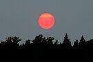 Blood Sun by skreklow