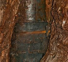 Ned Kelly Armour buried in old tree trunk by DavidsArt