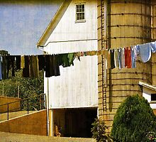Amish Laundry - Or - How The Amish Go Online by Gayle Dolinger