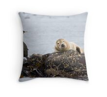 Farne Islands Wildlife Throw Pillow