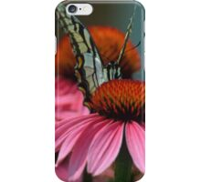 Hello Says the Eastern Tiger Swallowtail  iPhone Case/Skin