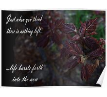 Life Bursts Forth Into The Now Poster