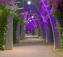 Southbank Walkway by Peter  Holroyd