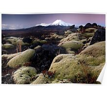 Mountain Mosses Poster