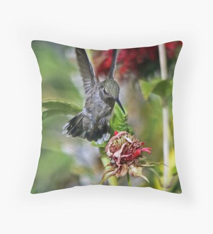 Someone Been Eating My Bee Balm Flowers  Throw Pillow