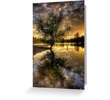Sunset Tree Greeting Card