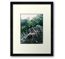 Jungle Cruise Framed Print