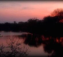 Evening Comes ©  by Dawn M. Becker