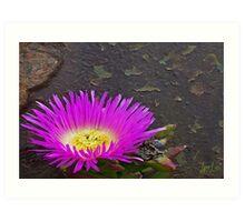 Bloom on Turret Art Print