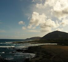 Koko head shoreline by Aaron Baker