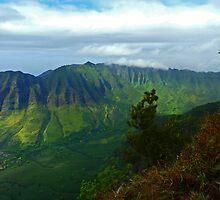 Kamaileunu Ridge 2 by Leslie Merrell