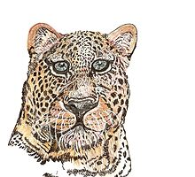leopard by paula cattermole artinapuddle