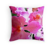 Laughing at you Throw Pillow