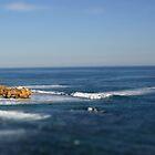 Ocean Tiltshift by wilsonsz