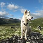 hes first mountain trip by detlef fischer