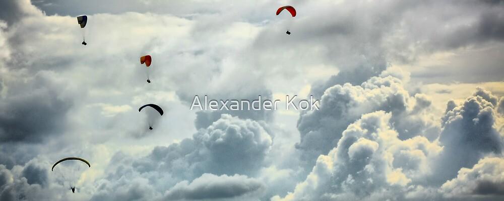 Gliding through the sky by Alexander Kok