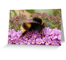 Bumble Bee Moment Greeting Card