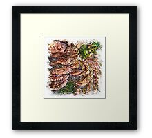 The Atlas Of Dreams - Color Plate 137 Framed Print