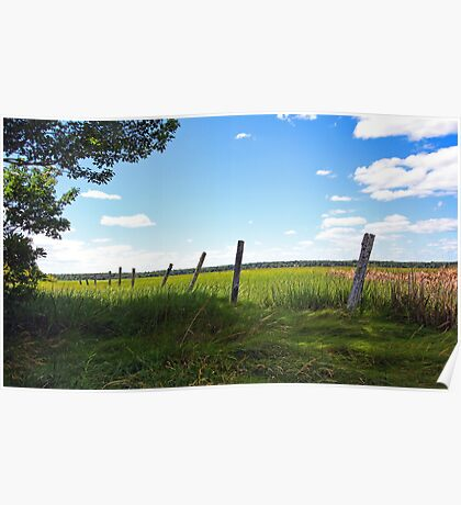Old FencePosts - The Marsh at Pine Point Poster