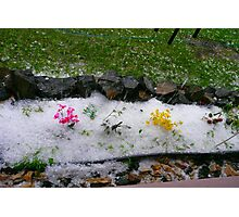What The....Hail! Photographic Print