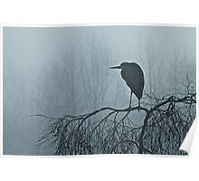Foggy Great Blue Heron Poster