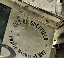 City of Sheffield by Mike Higgins