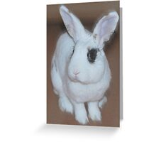 Ted, the rabbit Greeting Card