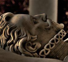Stone Watcher by Merlina Capalini
