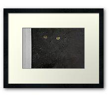 black cat, screen window Framed Print