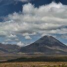 Under the Volcano by Peter Kurdulija