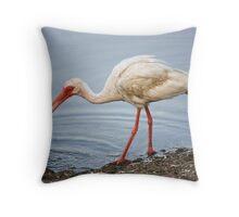 Ibis Eating a Crab Throw Pillow