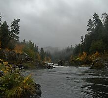 Umpqua on an Angry Fall daze... by Bob Moore