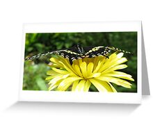 Edge of the beauty Greeting Card