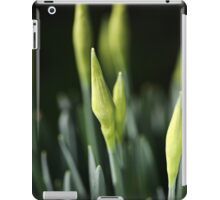 Daffodil Buds iPad Case/Skin