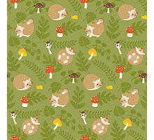 Kawaii Hedgehog green pattern Photographic Print