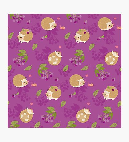Kawaii Hedgehog purple pattern Photographic Print