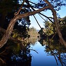 Leven River Reflections by Glenn Bumford