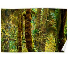 Hall of Mosses Poster