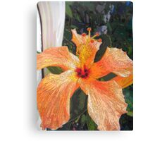 The church on a petal - natural world - floral abstract Canvas Print