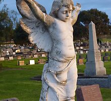 morning angel overlooking by Davegazzard
