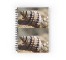 Sea Shell Spiral Notebook