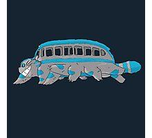 Cheshire no totoro - run - Tim Burton version Photographic Print