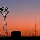 Oakey Sunset Australia by Beth  Wode