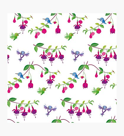 Kawaii Hummingbird fuchsia white pattern Photographic Print