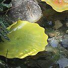 Glass Lily Pad by Karen K Smith
