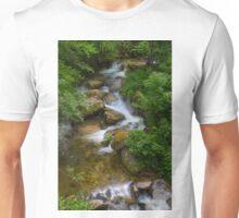Cathar Falls Unisex T-Shirt
